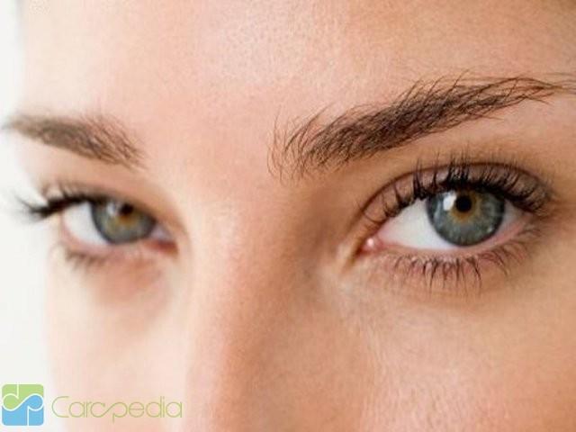 selain mata dan alis mata kelopak mata menjadi bagian penting untuk ...