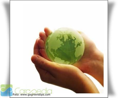 Pengertian dan Definisi Lingkungan Hidup Menurut Para Ahli