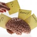 Mengenal Tiga Jenis Ingatan