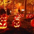 Pesta Halloween, Mulai Dari Mitos Hingga Perayaan Pesta