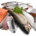 Cara Mengolah Seafood Agar Tidak Amis