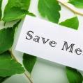 Yuk, Selamatkan Bumi Sambil Bekerja