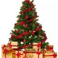 Mengenal Makna Tradisi Pohon Natal