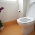 Mana Yang Lebih Sehat? WC Jongkok atau WC Duduk